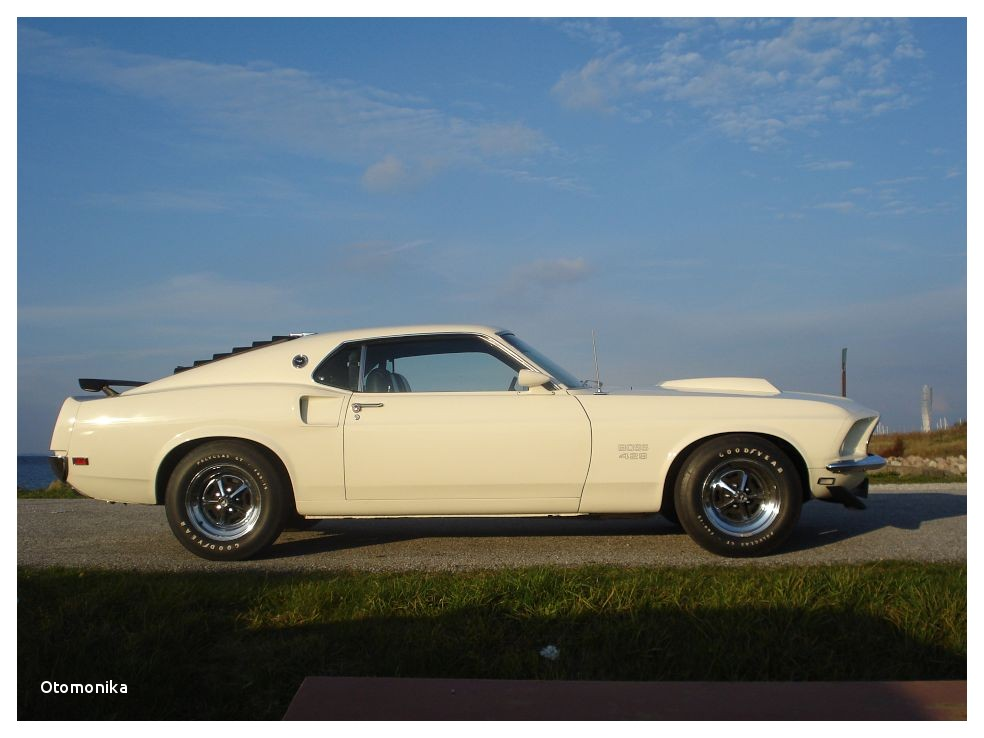 Mustangs for Sale In Indiana Craigslist | Automotive & Electronics